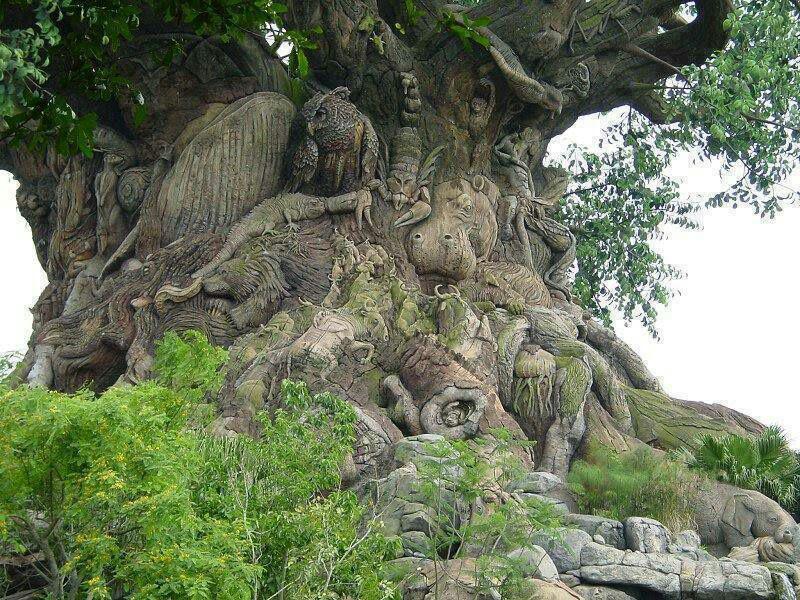 درختی با 235 نوع حیوان بر روی تنه آن (عکس)