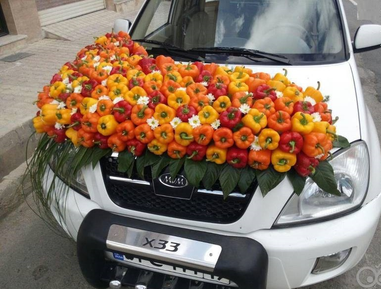 تزیین ماشین عروس با فلفل دلمهای (عکس)