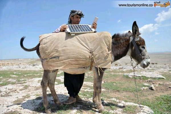 الاغی که به پنل خورشیدی مجهز شد (عکس)