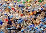 آنزیمی که زباله را میبلعد (+فیلم)