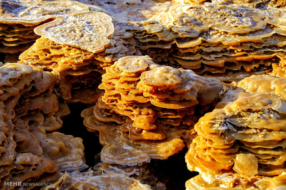 سفری به صحرای داناکیل در اتیوپی (عکس)