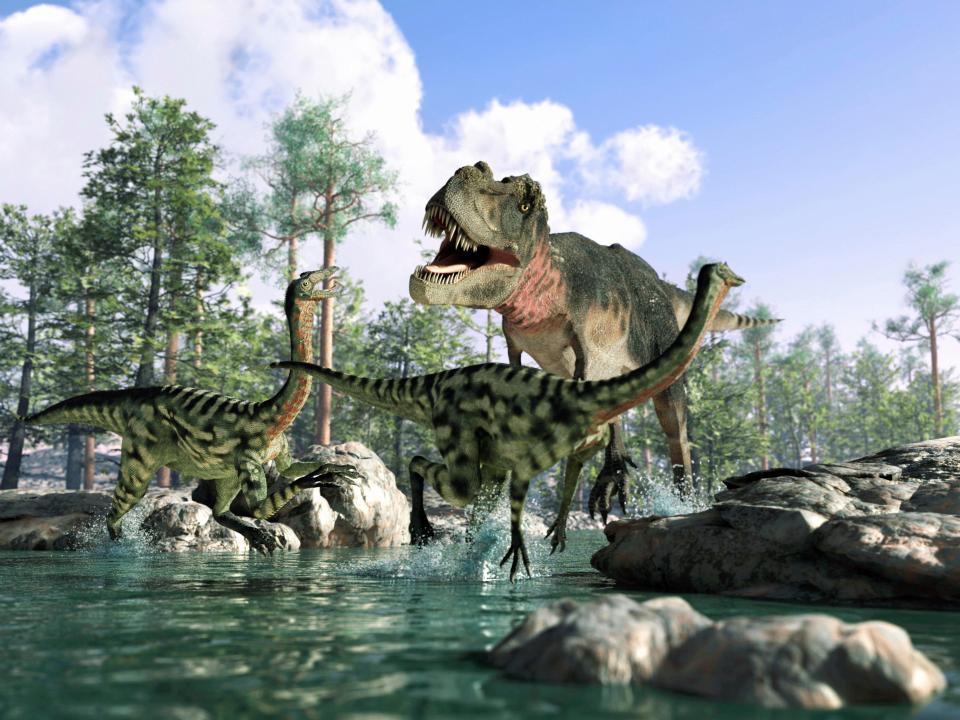 دایناسورهایی که مواد مخدر مصرف می کردند!