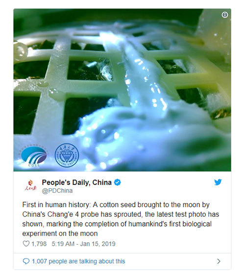 چین اولین گیاهان را در کره ماه پرورش داد