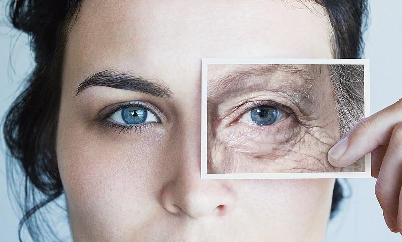 «فیستین»؛ راه حلی برای مقابله با پیری