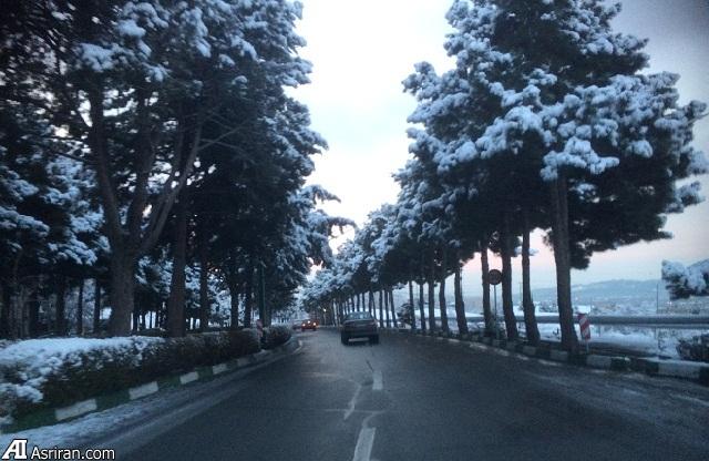اعلام مهمترین علل تصادفات درونشهری در فصل زمستان