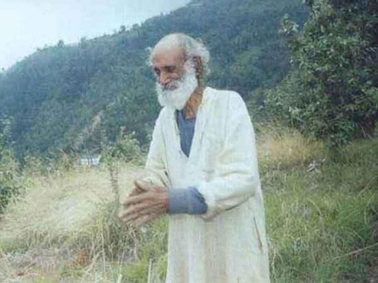 پیرمردی که دست تنها یک جنگل واقعی ساخت! (+عکس)