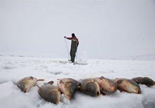 ماهیگیری در برکههای یخزده ترکیه (+عکس)