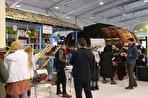 از رقابت بزرگ تا انتخاب گردشگران نوروزی/ نمایشگاه گردشگری و رقصها و آیینهای محلی (فیلم)