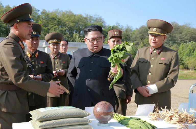 سازمان ملل: تولید محصولات کشاورزی کره شمالی نصف شد / نصف مردم کره شمالی نیازمند کمک غذایی هستند