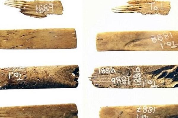 کشف قدیمیترین ابزار خالکوبی جهان (عکس)