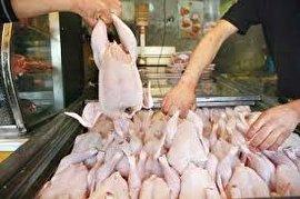 قیمت مرغ در بازار ۴۷ درصد بالاتر از نرخ مصوب