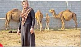 پرورش شتر توسط یک زن در تبریز