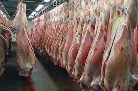 ذخایر گوشت مرغ منجمد خوب است/ گوشت تازه از کشورهای آسیای میانه و استرالیا وارد می شود