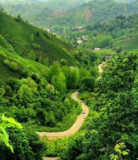 طبیعت زیبای منطقه