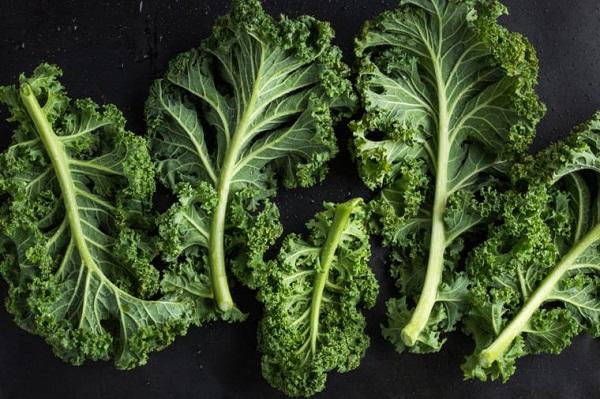 سدی از جنس میوه و سبزیجات در برابر سرطان