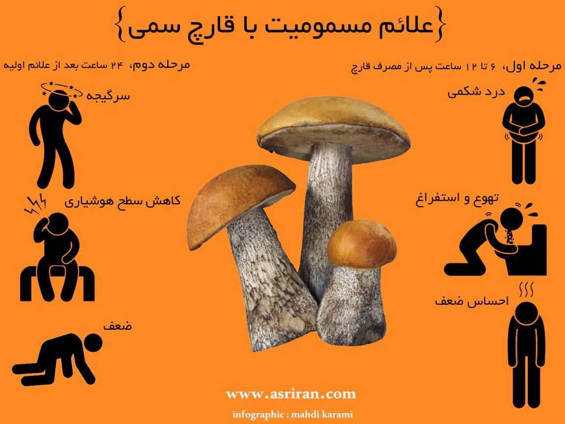 علائم مسمومیت با قارچ سمی (اینفوگرافیک)
