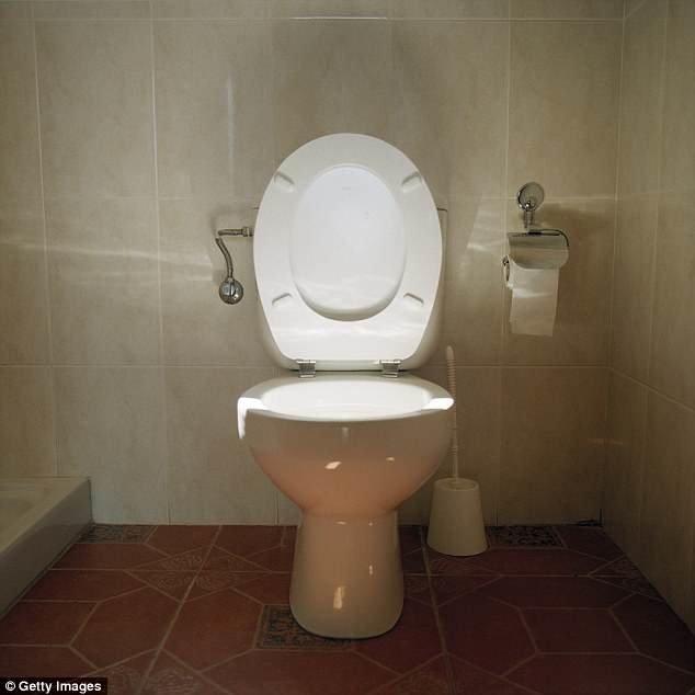 اون توالتش را هم به سنگاپور برده بود! (+عکس)