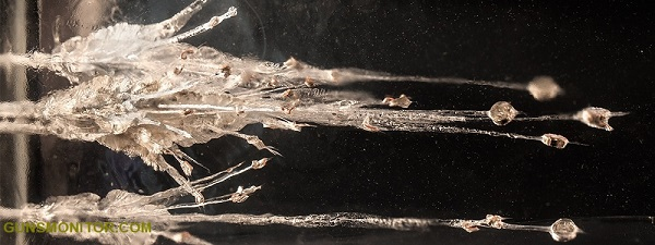 دانستنی هایی درباره ژل بالیستیک! (+تصاویر)