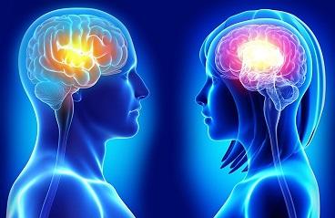 در مغز زنان چه می گذرد؟  چرا خانم ها بیش از مردان حرف می زنند؟
