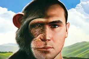 فرق مهم انسان و میمون چیست؟ دانشمندان لایپزیک آلمان پاسخ می دهند