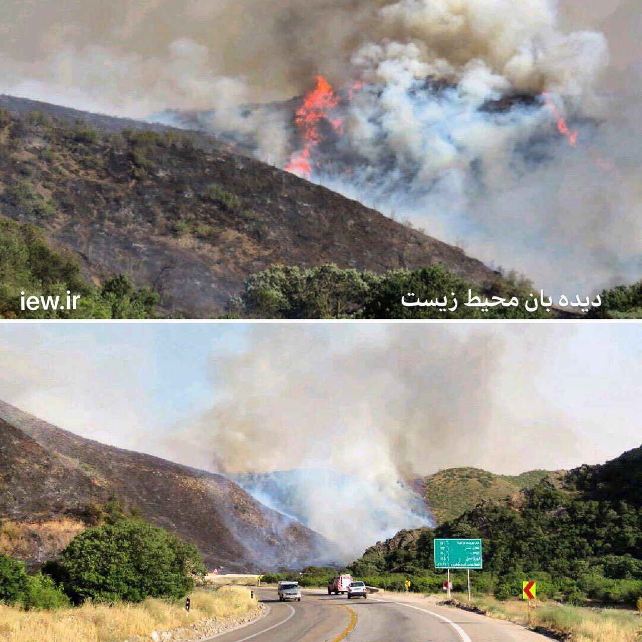 آتش سوزی مهیب در پارک ملی گلستان (عکس)
