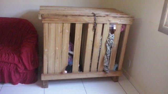 دوقلوهای برزیلی درقفس چوبی (+عکس)