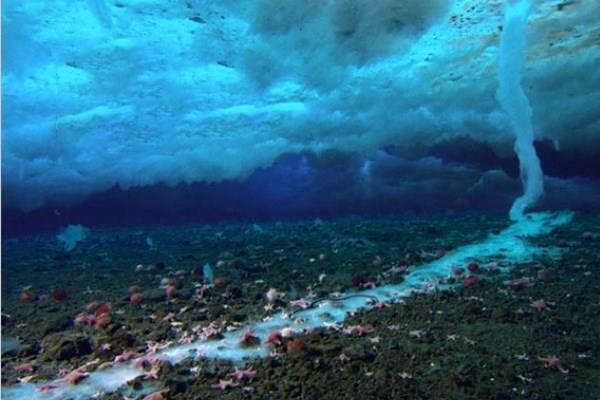 7 پدیدهی عجیب در اقیانوسها (+عکس)