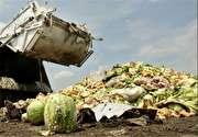 دورریز غذای ایرانیها، میتواند ۱۲ میلیون انسان گرسنه را سیر کند (+فیلم)