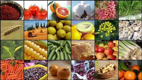 تغییرات 3 ماهه قیمت محصولات کشاورزی