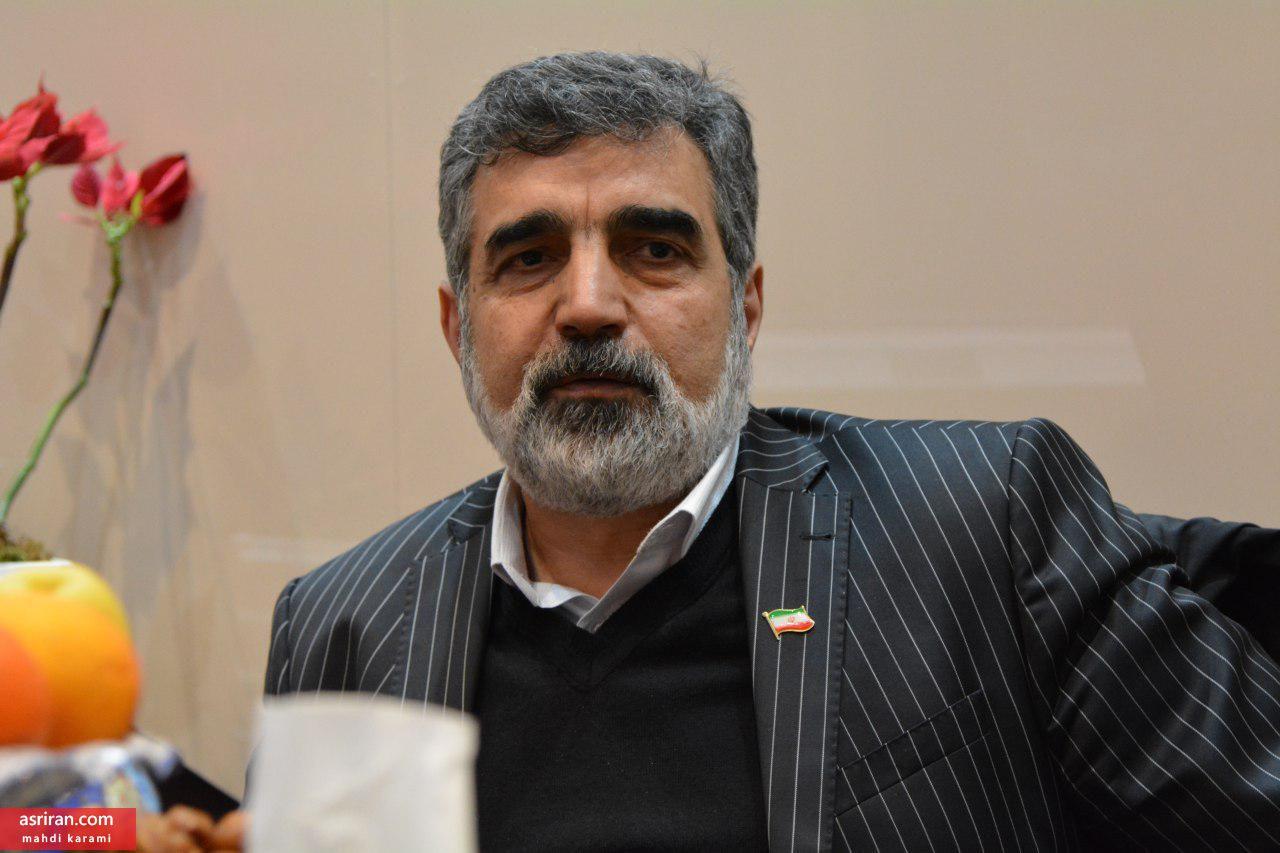 سخنگوی سازمان انرژی اتمی: ماندن در برجام بهتر از نماندن در آن است/ اروپا به خاطر ایران با آمریکا درگیر نمیشود