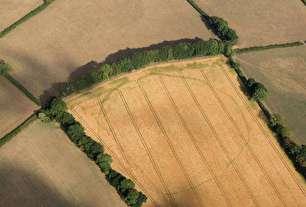 کشف اسرار جدید از تاریخچه دفن شده انگلستان (+عکس)