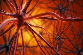 چرا پلاکهای آلزایمر همواره به زوال عقل منجر نمیشوند؟
