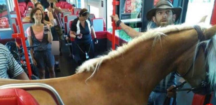 قطار سوار شدن مرد استرالیایی با اسب! (+عکس)