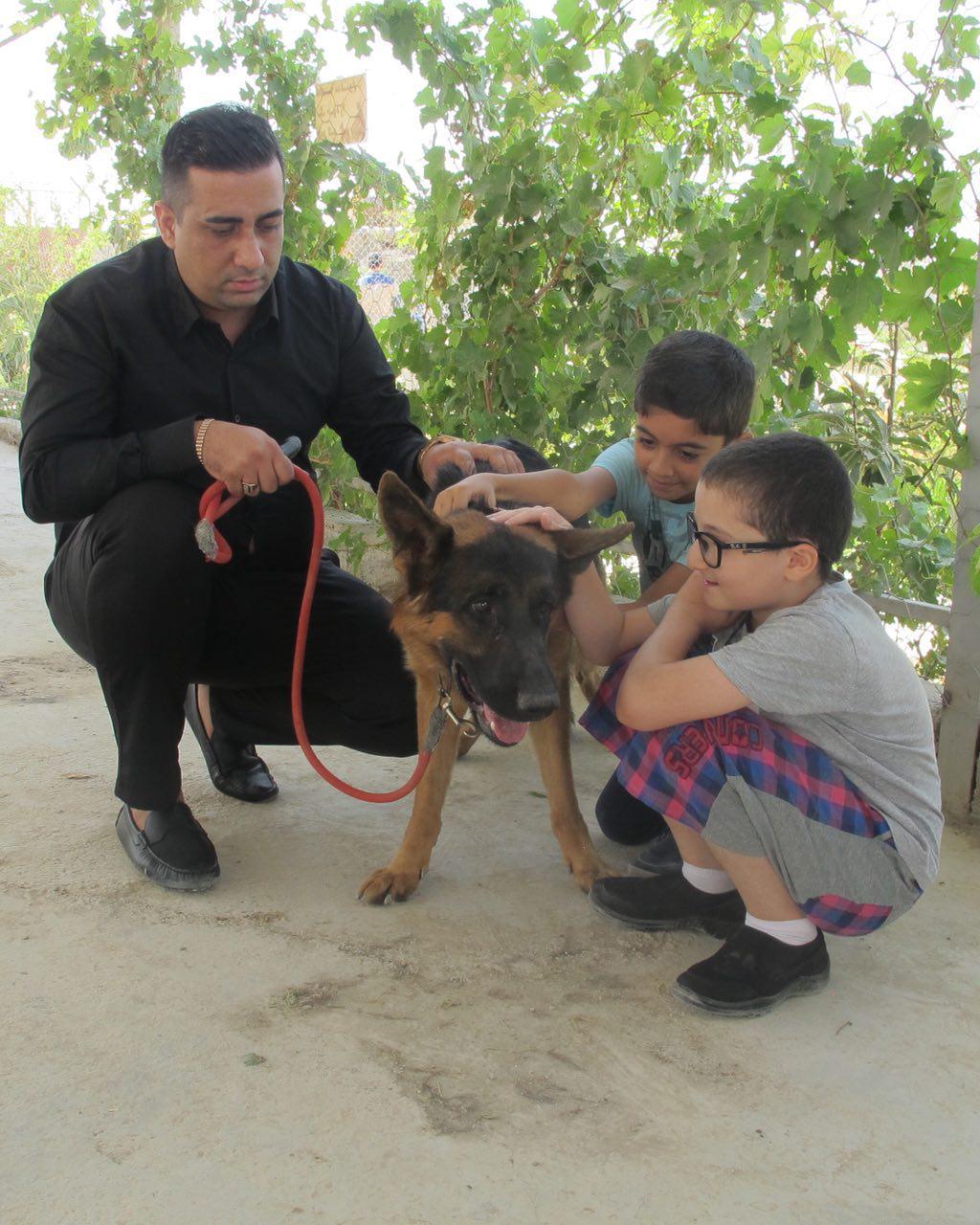 کنترل بیماری کودکان اوتیسم توسط سگهای دستیار