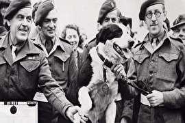 متفاوت ترین نظامیان انگلیسی؛ از فراخوان تا اولین اسیر! (+تصاویر)