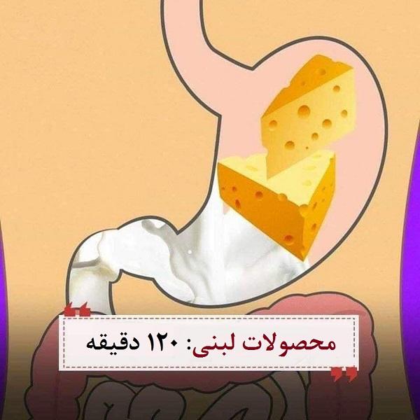 گوارش غذا چقدر زمان میبرد؟