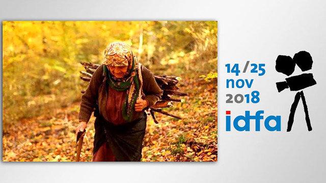 «دلبند» ایرانی در رتبه دوم آرای مردمی جشنواره «ایدفا»