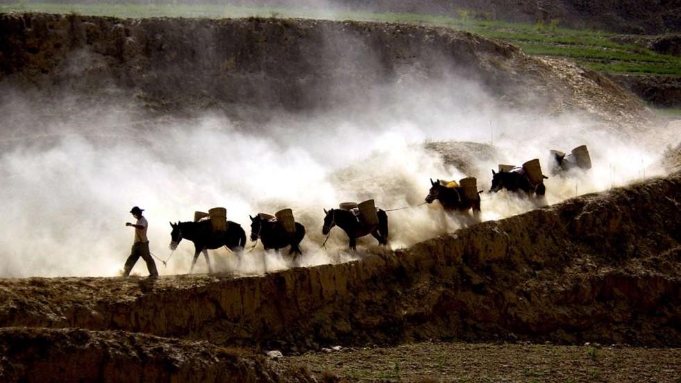 اقتصاد خرکی و اکسیر معجزه بخش چینی