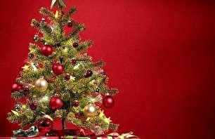 کشوری که درخت کریسمس را ممنوع کرد!