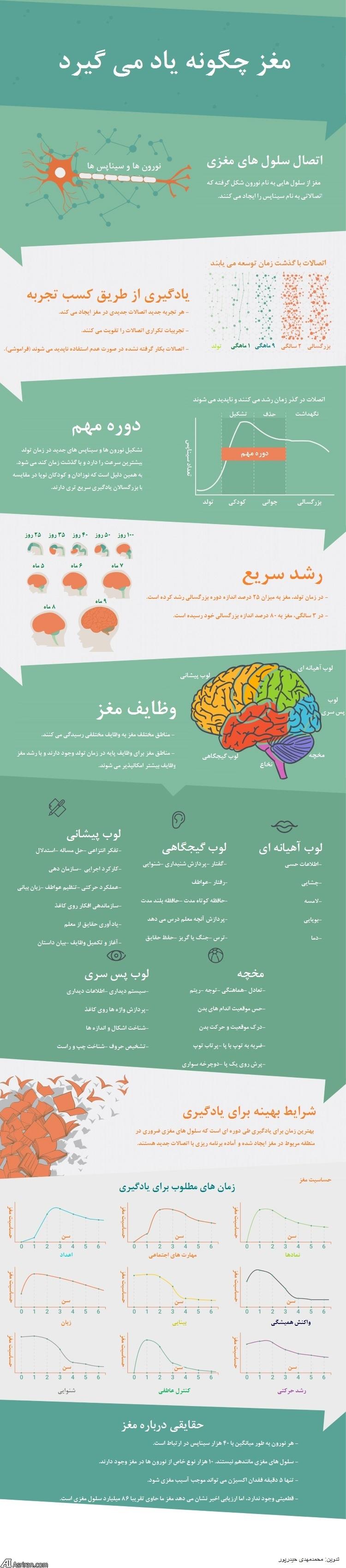 رشد و تکامل ذهنی در کودکان صفر الی شش ساله