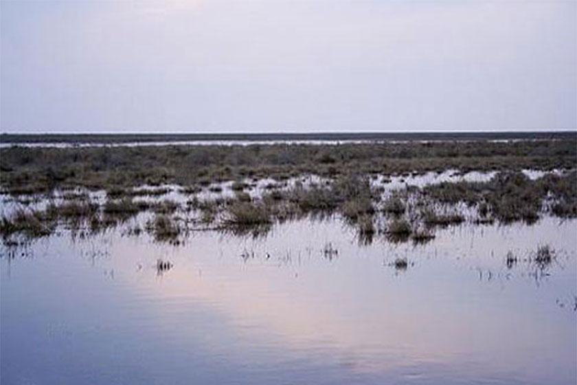 آبگیری 98 درصد تالاب بندعلیخان در دشت ورامین