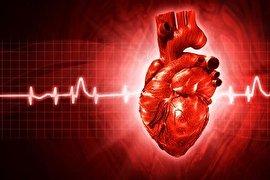 14 عامل خطرآفرین برای بیماری قلبی!