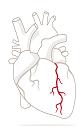 کلینیک قلب عصر ایران/ بروزرسانی فروردین 98