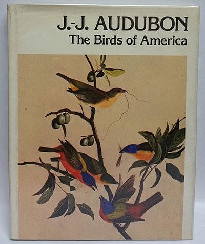 پرندگان آمریکا