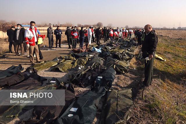 یک جعبه سیاه هواپیمای اوکراینی پیدا شد