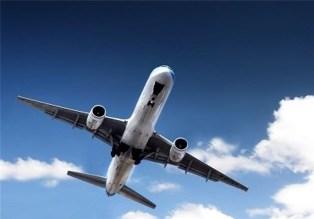 تنها جامانده از سقوط هواپیمای اوکراینی کیست؟ / توقیف خودرو جان مسافر را نجات داد