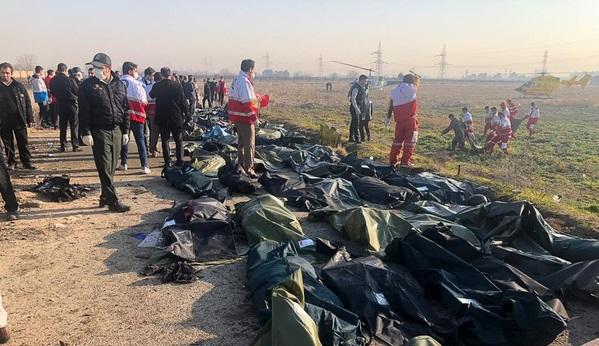 پزشکی قانونی: خانوادههای قربانیان سقوط هواپیما به ادارات کل استان محل سکونت خود مراجعه کنند