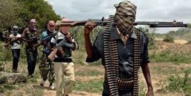 آمار قربانیان حمله تروریستی به غرب نیجر به 89 نفر رسید
