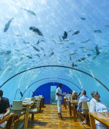 رستوران زیردریایی ایتا (Ithaa)، مالدیو