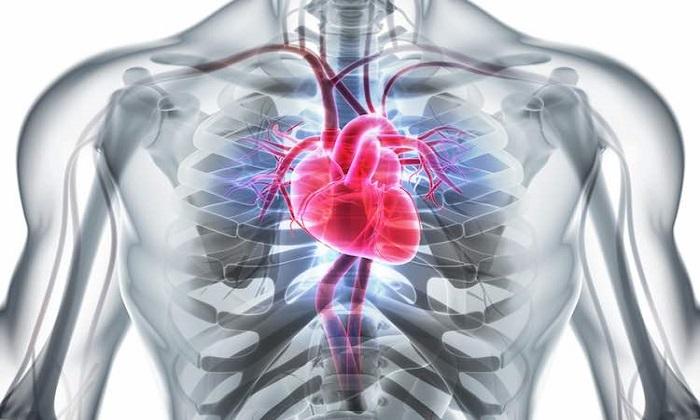 5 راهبرد برای تقویت سلامت قلب بی ارتباط با ورزش و رژیم غذایی